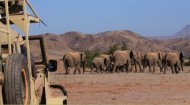 Volunteer Work Namibia: African Impact
