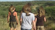 Volunteer Work Namibia: Namibia Wildlife Sanctuary